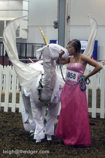 Things About Stuff » Llama fashions of 2011